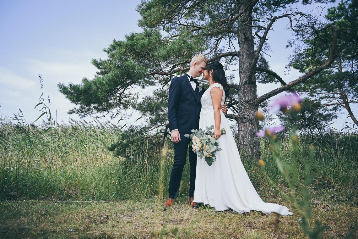 rustikt bröllop i Mönsterås och Oknö brudpar vid tall